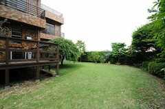 庭の様子2。(2013-05-10,共用部,OTHER,1F)