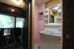 脱衣室に設置された洗面台。シャワー水栓です。(2012-07-09,共用部,OTHER,1F)