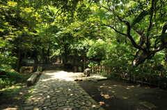 名主の滝公園の様子。(2012-07-09,共用部,ENVIRONMENT,1F)