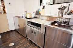 シェアハウスのキッチンの様子3。(2009-07-03,共用部,OTHER,1F)