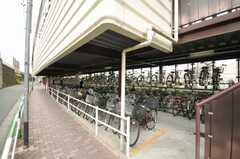 王子駅の自転車置場の様子。(2009-07-03,共用部,ENVIRONMENT,1F)