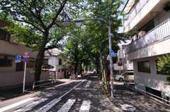 シェアハウスから埼京線板橋駅へ向かう道の様子。(2010-05-21,共用部,ENVIRONMENT,1F)