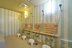 バスルームの様子2。(2018-01-15,共用部,BATH,2F)