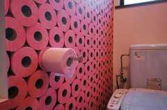 ピンクのトイレットペーパーがたくさん。紙がないときも気分は安心です。(2012-04-09,共用部,TOILET,2F)