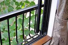 窓先は緑いっぱい。(202号室)(2012-06-01,専有部,ROOM,2F)