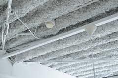 天井は抜かれています。(201号室)(2012-09-24,専有部,ROOM,2F)