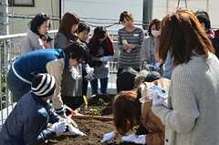 ベランダ菜園で行われた野菜の種まきイベントの様子。(2013-02-23,共用部,PARTY,2F)