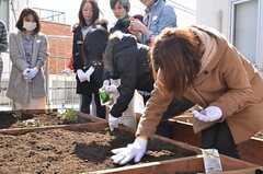 ベランダ菜園で行われた野菜の種まきイベントの様子2。(2013-02-23,共用部,PARTY,2F)