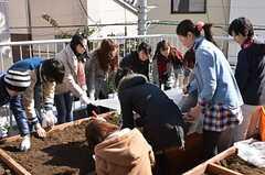 ベランダ菜園で行われた野菜の種まきイベントの様子3。(2013-02-23,共用部,PARTY,2F)
