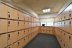 靴箱の様子。ひとり扉1枚分使えます。上段は郵便受けとして使用します。(2018-04-02,周辺環境,ENTRANCE,1F)