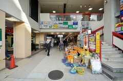 西武新宿線小平駅前の様子。(2009-02-17,共用部,ENVIRONMENT,1F)