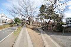 西武新宿線小平駅からシェアハウスへ向かうグリーンロードの様子2。(2009-02-17,共用部,ENVIRONMENT,1F)