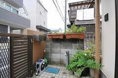 玄関前は植物が並んでいます。(2012-06-20,周辺環境,ENTRANCE,1F)