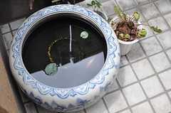 足元には金魚鉢。(2012-06-20,周辺環境,ENTRANCE,1F)