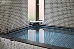 お風呂はどーんと大きめ。(2014-03-05,共用部,BATH,1F)