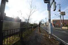 シェアハウスの目の前を通る、玉川上水緑道の様子。(2014-03-05,共用部,ENVIRONMENT,1F)