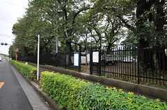 シェアハウスのすぐ目の前には、東京学芸大学の「通称:ドラえ門」があります。(2013-10-02,共用部,ENVIRONMENT,1F)
