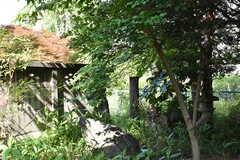 庭の様子。(2017-05-29,共用部,OTHER,1F)