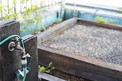 奥には菜園があり、野菜を育てられます。蛇口あるので水やりも便利。(2013-09-12,共用部,OTHER,4F)