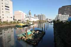 都営新宿線住吉駅からシェアハウスへ向かう道の様子。(2009-12-22,共用部,ENVIRONMENT,1F)