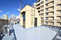 屋上の様子2。物干し台が設置予定です。(2020-02-27,共用部,OTHER,4F)