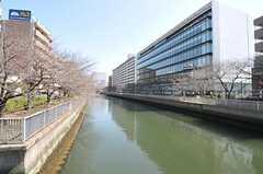 シェアハウス近くの川沿いは桜並木です。(2012-03-29,共用部,ENVIRONMENT,1F)