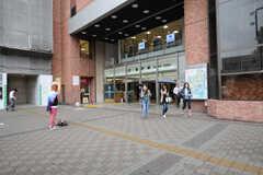 各線・亀戸駅の様子。(2013-06-11,共用部,ENVIRONMENT,1F)