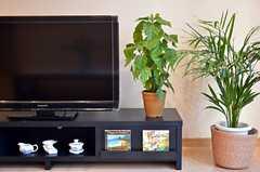 共用TVの様子。フラのCDも置かれています。(2012-01-09,共用部,LIVINGROOM,2F)