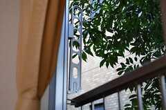 窓の外には物干し金具が付いています。(201号室)(2012-01-09,専有部,ROOM,2F)