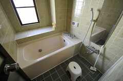バスルームの様子。(2013-03-15,共用部,BATH,3F)