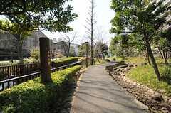 近くには緑の多い遊歩道があります。(2013-03-15,共用部,ENVIRONMENT,1F)
