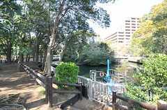 近くにある親水公園の様子。(2013-03-15,共用部,ENVIRONMENT,1F)