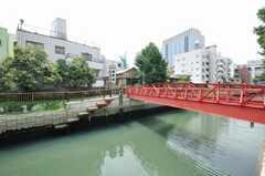 橋も良い雰囲気。(2009-08-19,共用部,ENVIRONMENT,1F)