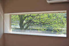 窓からは建物裏手に植わっている桜の木が見えます。(103号室)(2017-05-19,専有部,ROOM,1F)