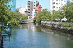 遊歩道のすぐ脇には川が流れています。(2017-05-19,共用部,ENVIRONMENT,1F)