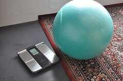 「健康」がテーマということで、バランスボールやオムロンの体脂肪計が置かれています。(2012-09-05,共用部,LIVINGROOM,4F)