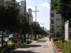 東京メトロ東西線東陽町駅からシェアハウスへ向かう道の様子。(2007-07-15,共用部,ENVIRONMENT,1F)