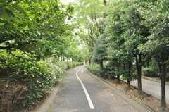 東京メトロ東西線木場駅からシェアハウスへ向かう道の様子。(2009-09-08,共用部,ENVIRONMENT,1F)