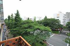 駅前から続く桜並木。背の高い木は銀杏です。春も秋も特等席から楽しめます。(2013-07-05,共用部,OTHER,4F)