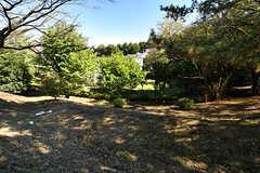 近くにある公園。斜面が多いです。(2016-10-18,共用部,ENVIRONMENT,1F)