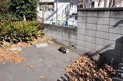 日向ぼっこする近所の猫。(2011-02-01,共用部,ENVIRONMENT,2F)