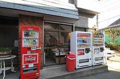 近くには駄菓子屋さんもあります。(2011-02-01,共用部,ENVIRONMENT,2F)