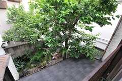 窓からは庭を見下ろせます。(2014-05-12,共用部,OTHER,2F)