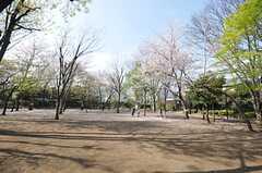 近所の公園の様子。(2009-04-08,共用部,ENVIRONMENT,1F)