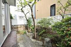 庭の様子。(101号室)(2009-06-11,専有部,ROOM,1F)