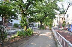 近くには気持ちのよい緑道があります。(2015-05-29,共用部,ENVIRONMENT,1F)