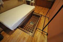 大きめの床下収納。(101号室)(2014-02-06,専有部,ROOM,1F)