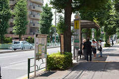 家の目の前にバス停があります。バスに乗ると渋谷・目黒・二子玉川・東京駅などに直通でアクセスできます。(2016-06-27,共用部,ENVIRONMENT,1F)