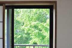窓いっぱいの緑。(705号室)(2014-05-01,専有部,ROOM,7F)