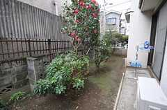 庭の様子。物干しができます。(2012-04-03,共用部,OTHER,1F)